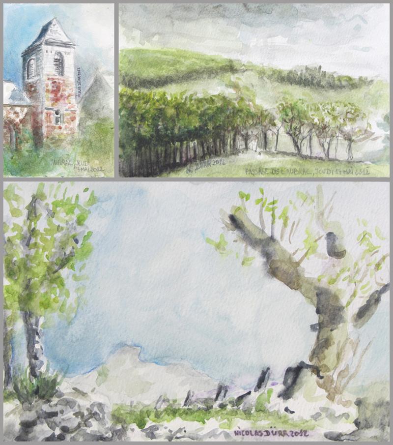 2012-aquarelles-aubrac-vue-1-d-aubrac-a-belvezet