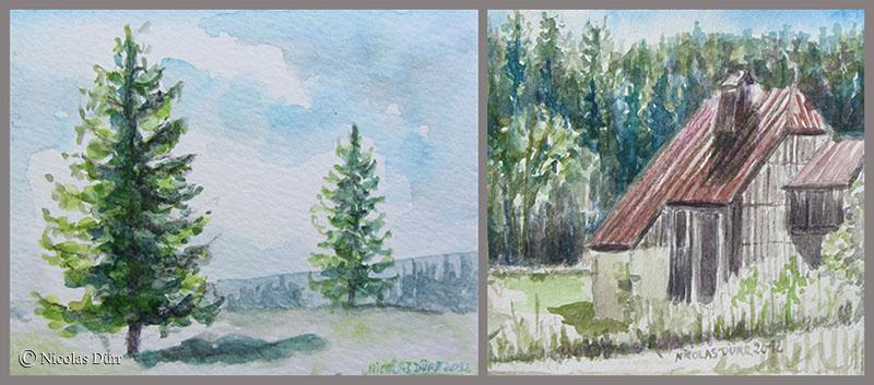 Etude en aquarelle d'une ferme comtoise entourée de sapins